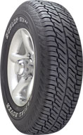 Dunlop Radial Rover RV XT tires
